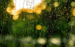 The Importance of Pre-Tank Filtration in a Rainwater Harvesting System