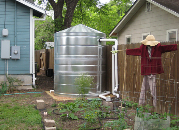 Wet System for Rainwater Harvesting